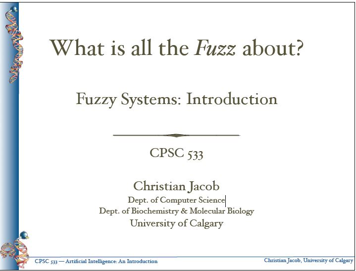 what-is-all-the-fuzz-about